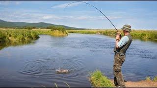 Рыбалка на рыбзаводе